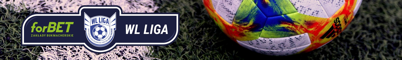 Oficjalna strona amatorskiej ligi piłkarskiej Stowarzyszenia Wiara Lecha